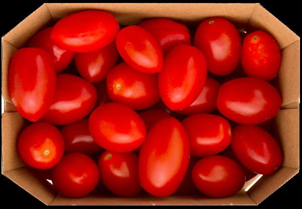 Tomaten Cherry Schale