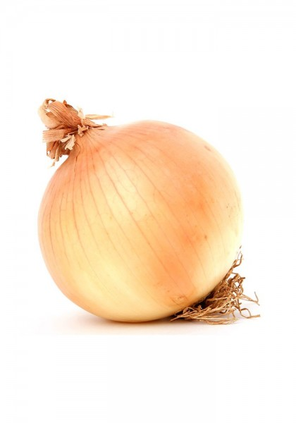 Gemüsezwiebel KG