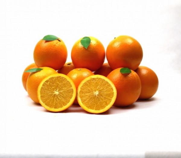 Orangen Press.KG