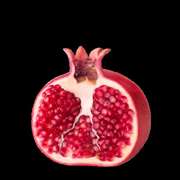 Granatapfel Sauer KG