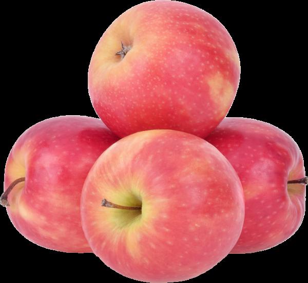 Apfel Pink Lady KG