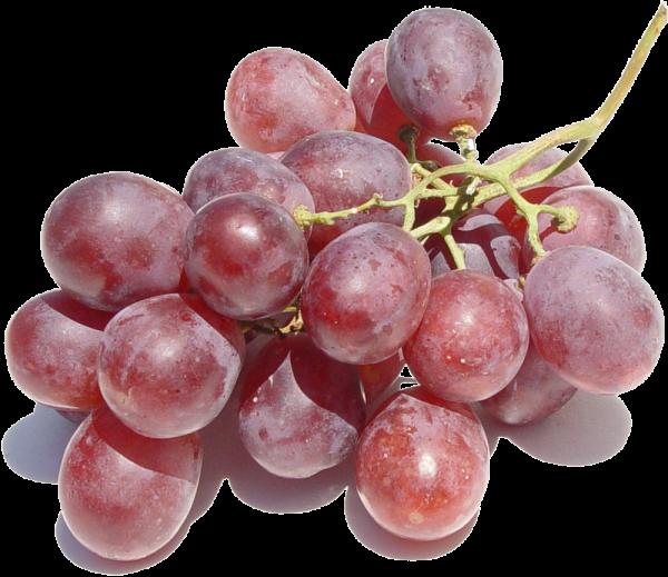 Weintrauben Sultanien KG