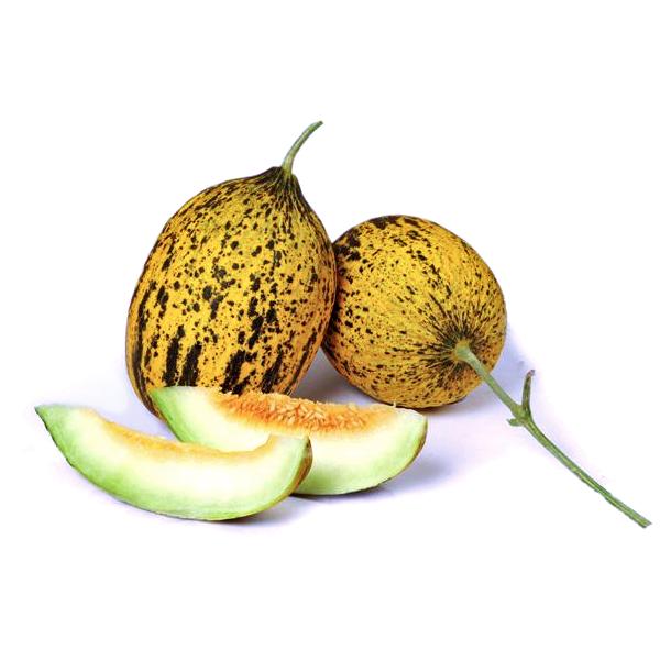 Honigmelone Kirkagac STTK