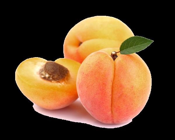 Aprikosen KG