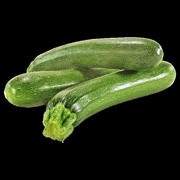 Zucchini KG